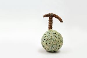 Fruit de l'arche de Noé 'ELLE'/方舟の果実'彼女'1
